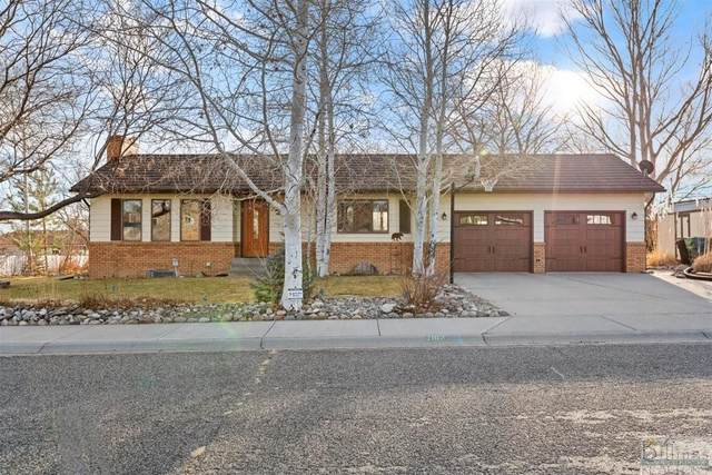 2163 Skyview Drive, Billings, MT 59105 (MLS #315115) :: The Ashley Delp Team