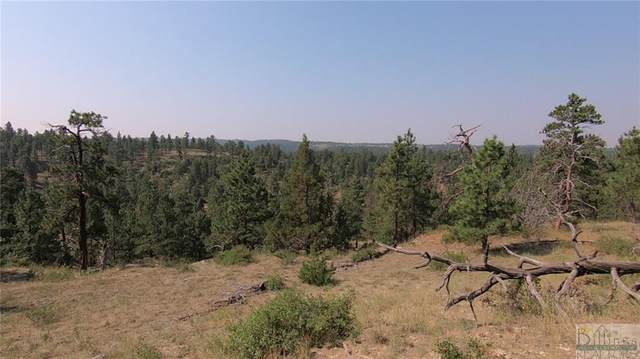 127 North Canyon Drive, Roundup, MT 59072 (MLS #315159) :: Search Billings Real Estate Group