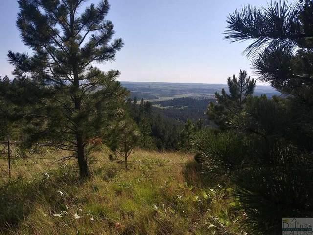 TBD 85 Taylor Mesa Lane, Roundup, MT 59072 (MLS #315205) :: Search Billings Real Estate Group