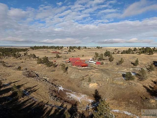 7800 Weed Creek Road, Custer, MT 59024 (MLS #315351) :: MK Realty