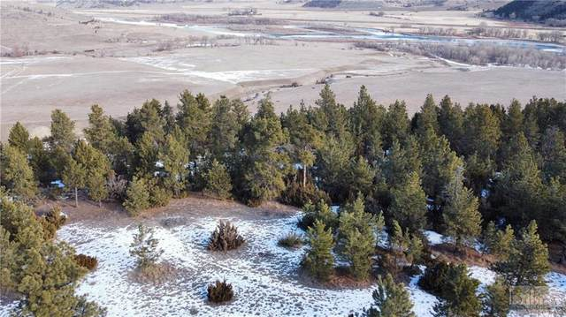 69 Colter Trail, Columbus, MT 59019 (MLS #316391) :: Search Billings Real Estate Group