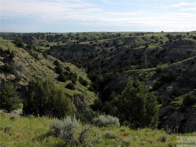 28 Crimson Sage Lance Creek, Wy, Other-See Remarks, MT 82222 (MLS #316461) :: MK Realty