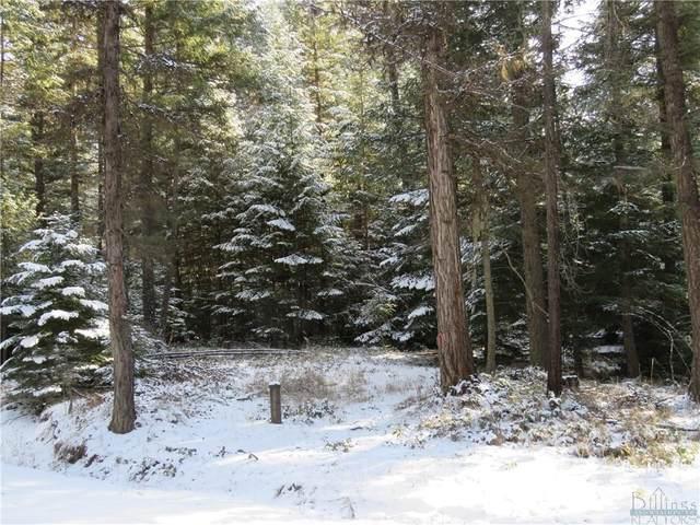 TBD, Troy Mud Lake Road, Other-See Remarks, MT 59935 (MLS #316643) :: Search Billings Real Estate Group