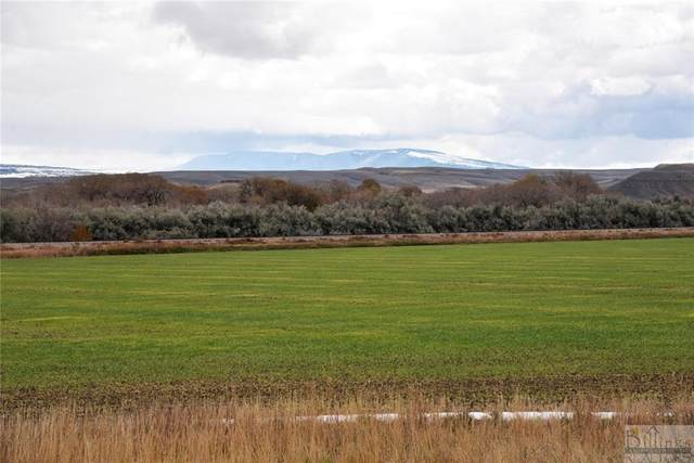 334 Acres Highway 310, Fromberg, MT 59029 (MLS #316688) :: Search Billings Real Estate Group