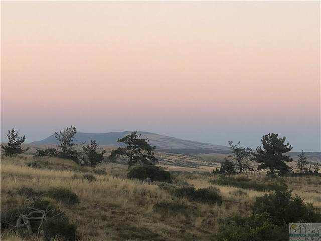 5 Acres Curry Lane, Bridger, MT 59014 (MLS #316754) :: Search Billings Real Estate Group