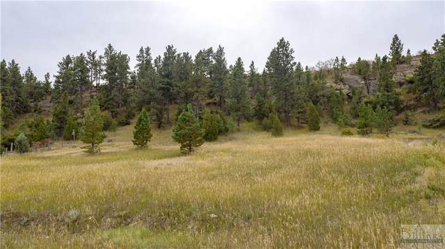 426 E Alkali Creek Rd, Billings, MT 59105 (MLS #317170) :: MK Realty
