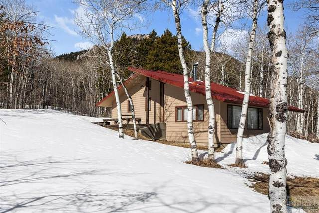 16 Kinikinic, Red Lodge, MT 59068 (MLS #317342) :: Search Billings Real Estate Group