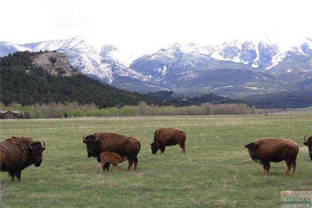 100 AC NSN Luther, Red Lodge, MT 59068 (MLS #317393) :: MK Realty