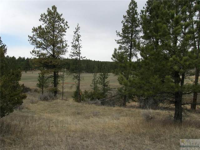 0 Tbd Hay Coulee Road, Roundup, MT 59072 (MLS #317637) :: MK Realty