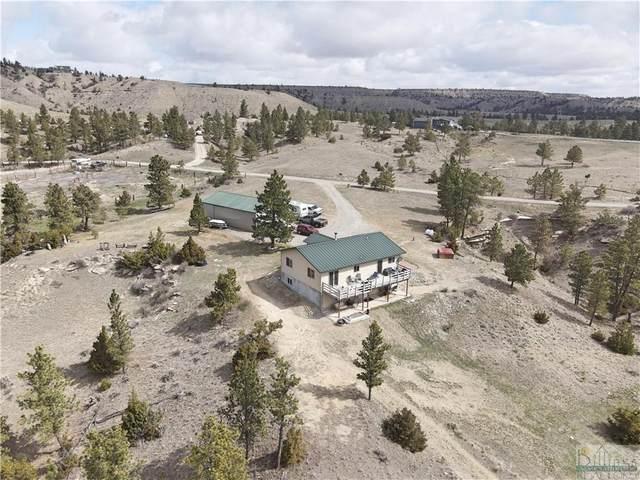12675 Hidden Valley Trail, Molt/Rapelje, MT 59057 (MLS #317639) :: MK Realty