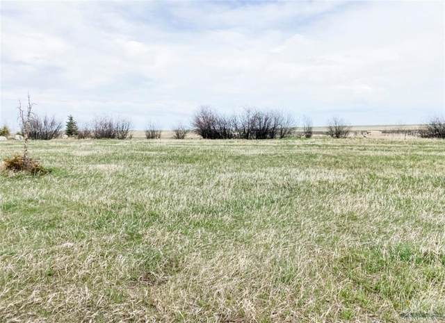 Lot 5 Lazy M Street, Red Lodge, MT 59068 (MLS #317997) :: Search Billings Real Estate Group