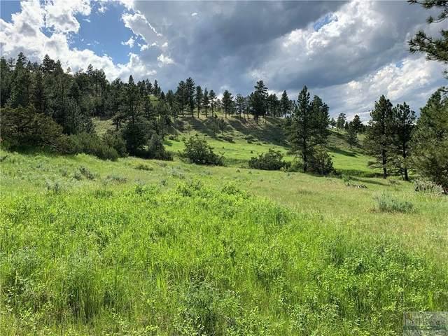 Lot 32 Old Bull Dr, Columbus, MT 59019 (MLS #318000) :: Search Billings Real Estate Group