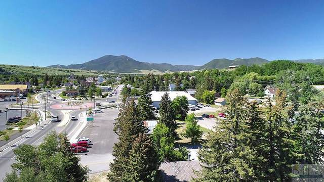 TRACT A Broadway Ave N, Red Lodge, MT 59068 (MLS #318114) :: MK Realty
