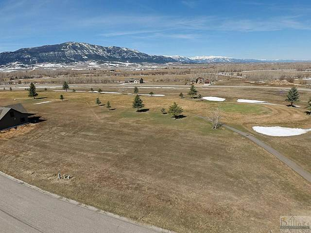 2730 Greenough Way, Red Lodge, MT 59068 (MLS #318265) :: Search Billings Real Estate Group