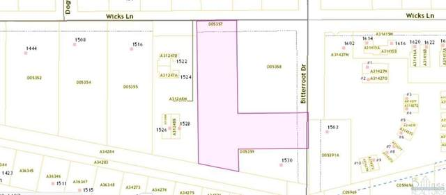 1536 Wicks Lane, Billings, MT 59105 (MLS #318381) :: Search Billings Real Estate Group