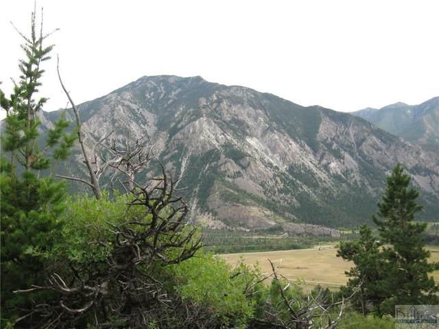 Lot 120 Sky View Trail, Nye, MT 59061 (MLS #319731) :: Search Billings Real Estate Group