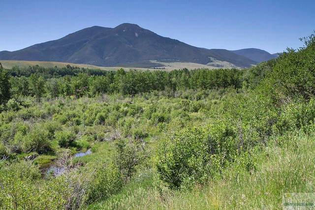 9 Pond Ln, Red Lodge, MT 59068 (MLS #320170) :: Search Billings Real Estate Group