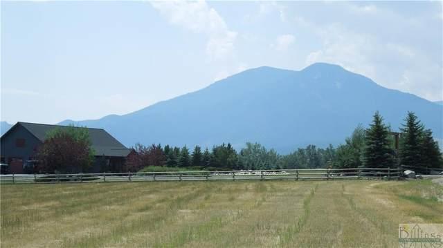 TBD Meadow Circle, Red Lodge, MT 59068 (MLS #321720) :: MK Realty