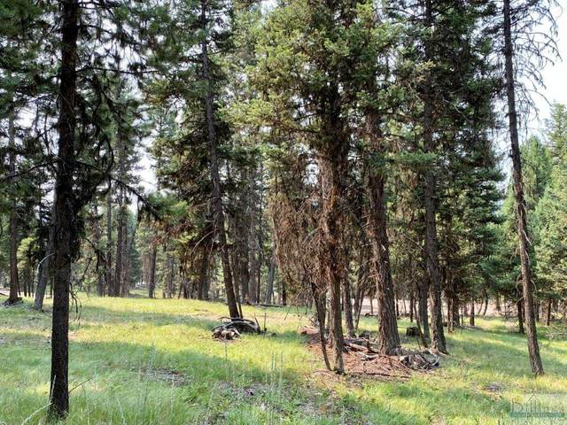 289 Seclusion Point, Seeley Lake, Other-See Remarks, MT 59868 (MLS #322057) :: Search Billings Real Estate Group