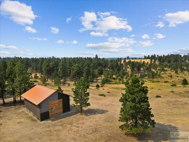TBD Juniper, Roundup, MT 59072 (MLS #322092) :: Search Billings Real Estate Group