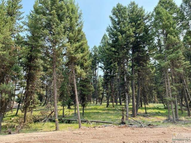 342 Seclusion Point, Seeley Lake, Other-See Remarks, MT 59868 (MLS #322211) :: Search Billings Real Estate Group