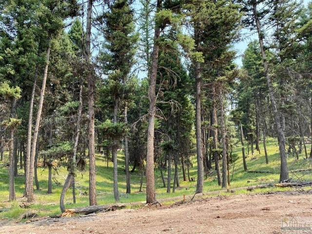 315 Seclusion Point, Seeley Lake, Other-See Remarks, MT 59868 (MLS #322354) :: Search Billings Real Estate Group