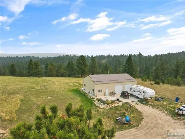 TBD Ambush, Roundup, MT 59072 (MLS #322794) :: Search Billings Real Estate Group