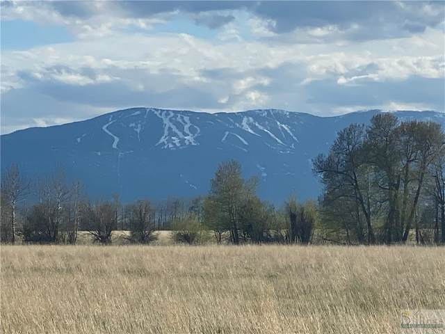 Lot 40 Buttercup Drive, Roberts, MT 59070 (MLS #322865) :: Search Billings Real Estate Group