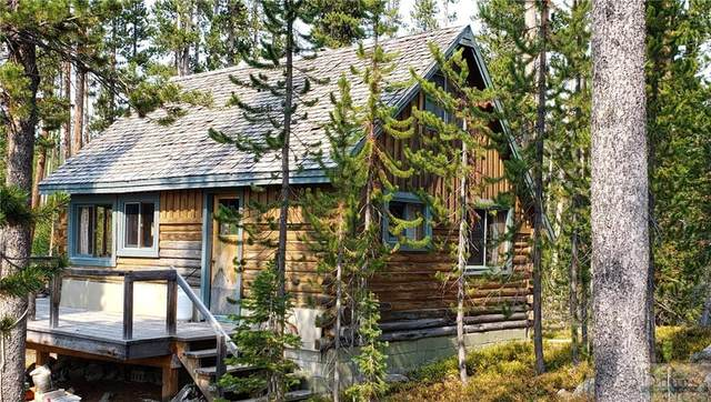 130 Sawmill Road, Cooke City, MT 59020 (MLS #322915) :: Search Billings Real Estate Group