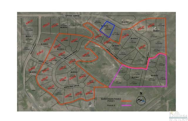 LOT 11 BLOCK 8 Central Avenue, Billings, MT 59106 (MLS #323055) :: The Ashley Delp Team