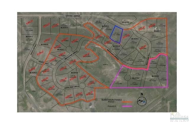 LOT 12 BLOCK 8 Central Avenue, Billings, MT 59106 (MLS #323057) :: The Ashley Delp Team