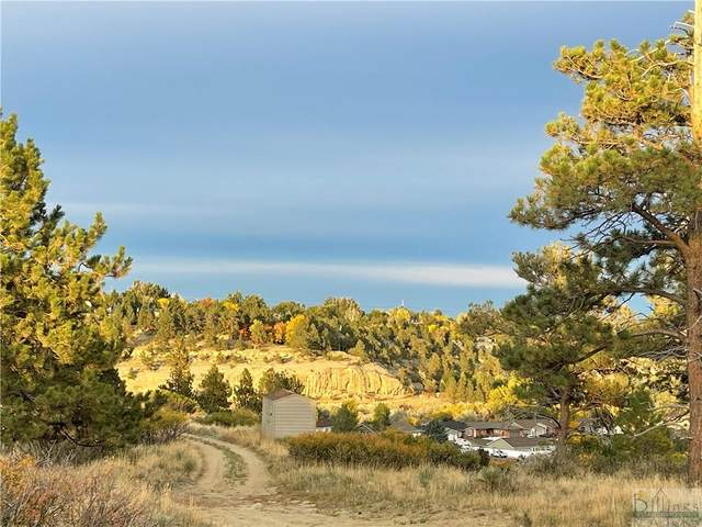 0 Valley Heights Rd., Billings, MT 59105 (MLS #323154) :: The Ashley Delp Team