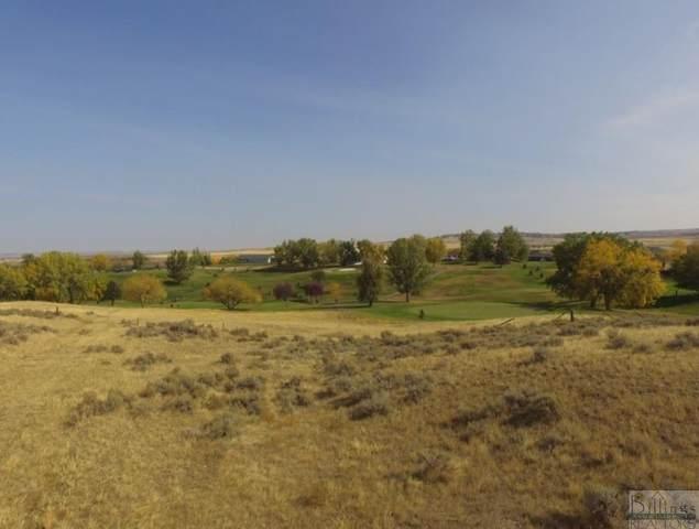 6703 Yellowstone Trail, Huntley, MT 59037 (MLS #323247) :: The Ashley Delp Team
