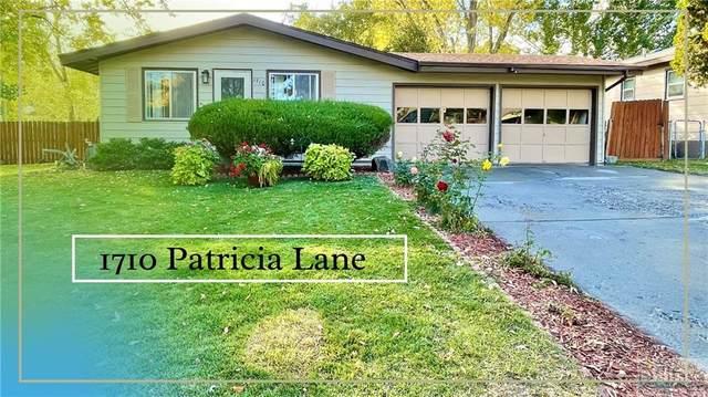 1710 Patricia Lane, Billings, MT 59102 (MLS #323272) :: MK Realty