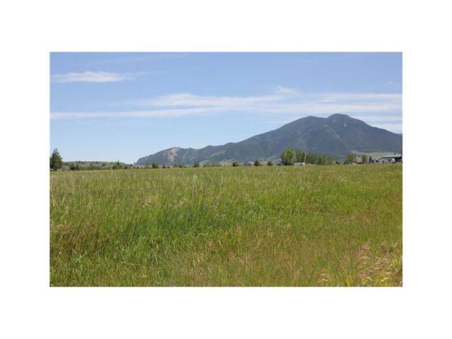 NSN Meadow Circle #37, Red Lodge, MT 59068 (MLS #260454) :: Realty Billings