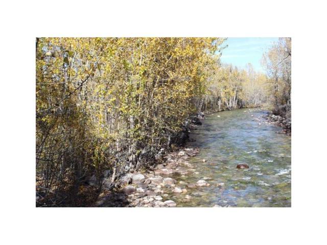 NSN Meeteetse Trail #5, Red Lodge, MT 59068 (MLS #264387) :: Realty Billings