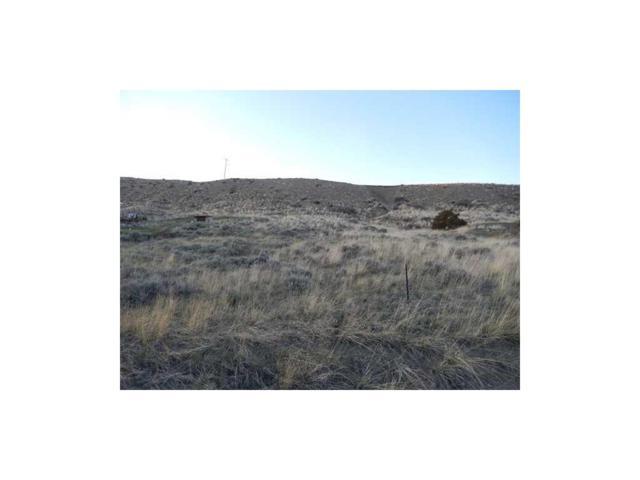0 Shorthorn Drive, Billings, MT 59106 (MLS #265182) :: Realty Billings
