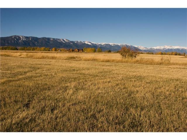 00 Horseshoe Trail, Red Lodge, MT 59068 (MLS #265525) :: Realty Billings