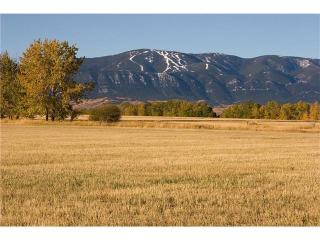 00 Horseshoe Trail, Red Lodge, MT 59068 (MLS #265528) :: Realty Billings
