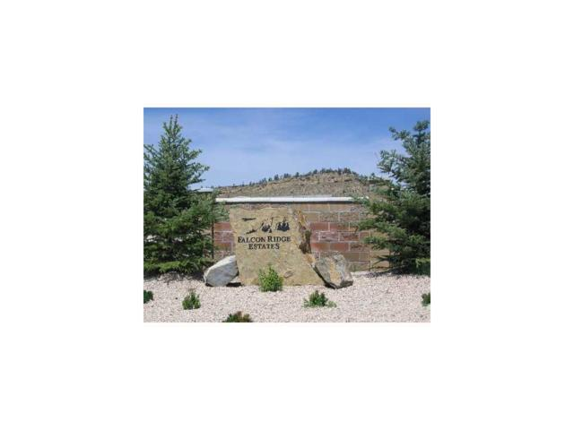 6203 Western Bluffs, Billings, MT 59106 (MLS #265777) :: Search Billings Real Estate Group