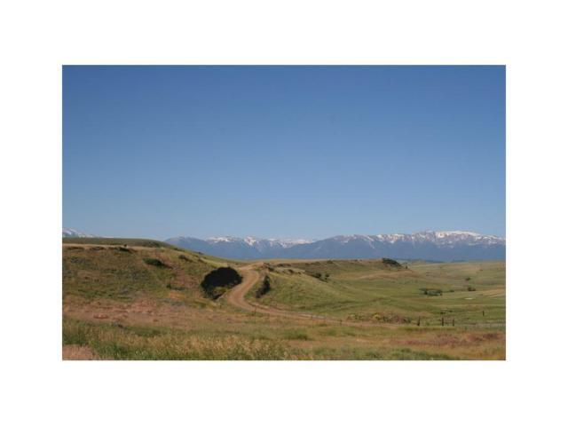 LOT 42 Crow Child Trail, Absarokee, MT 59001 (MLS #265954) :: Realty Billings