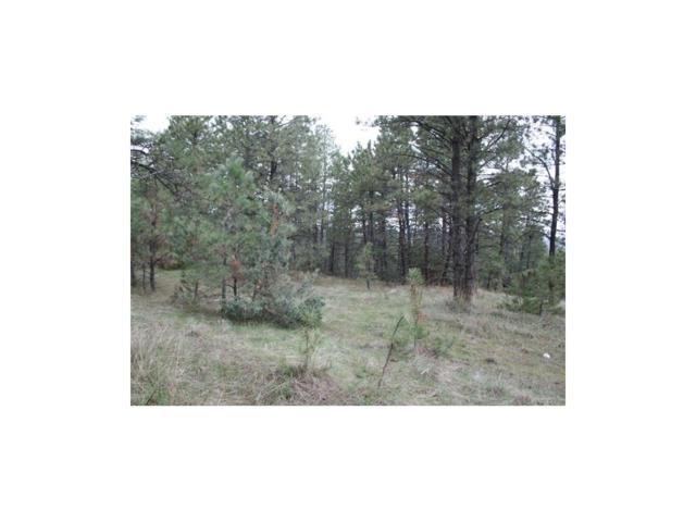 0 Bozeman Trail, Columbus, MT 59019 (MLS #270713) :: Realty Billings