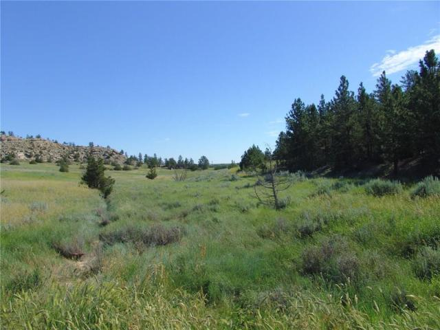 2 Winchester, Roundup, MT 59072 (MLS #270719) :: Realty Billings