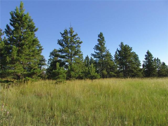 45 Winchester, Roundup, MT 59072 (MLS #270736) :: Realty Billings