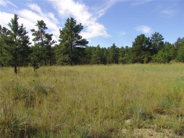 47 Winchester, Roundup, MT 59072 (MLS #270737) :: Realty Billings