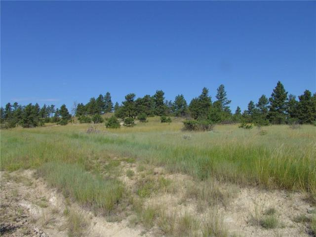 65 Winchester, Roundup, MT 59072 (MLS #270742) :: Realty Billings
