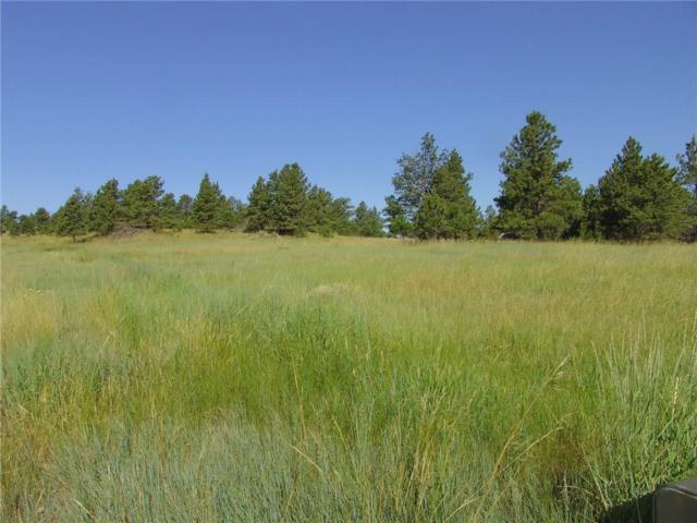 67 Winchester, Roundup, MT 59072 (MLS #270744) :: Realty Billings