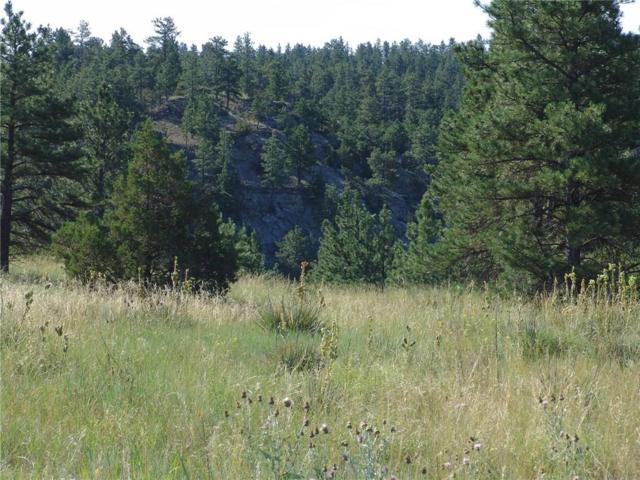 76 Winchester, Roundup, MT 59072 (MLS #270747) :: Realty Billings