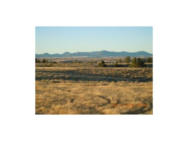 99 Beartooth Vista, Columbus, MT 59019 (MLS #271533) :: Realty Billings