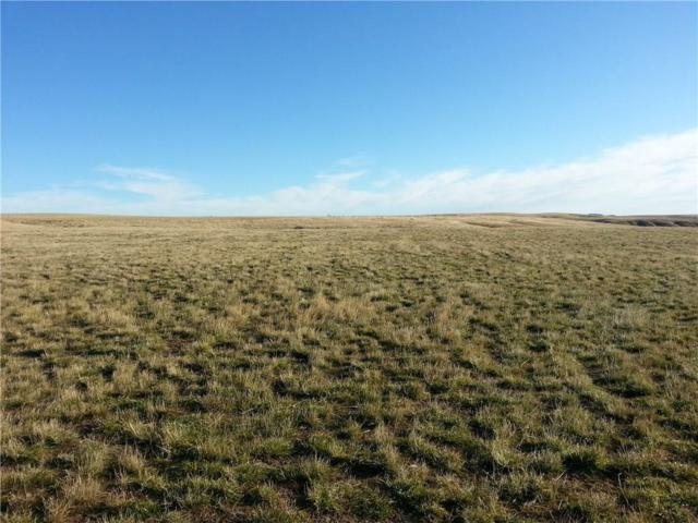 Lot 8 Patterson Ranch Road, Roberts, MT 59070 (MLS #271965) :: Realty Billings